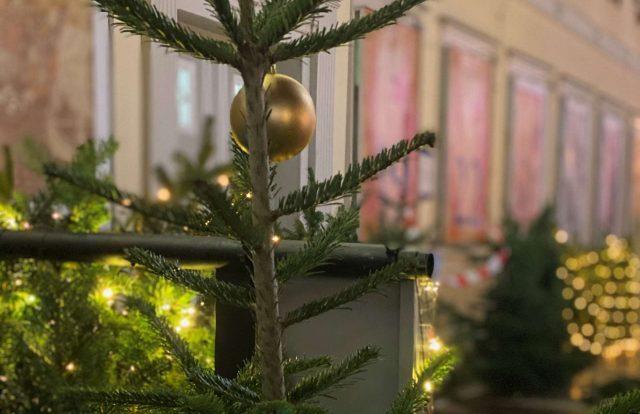 Bild_Weihnachtsbaum1812_small_quer